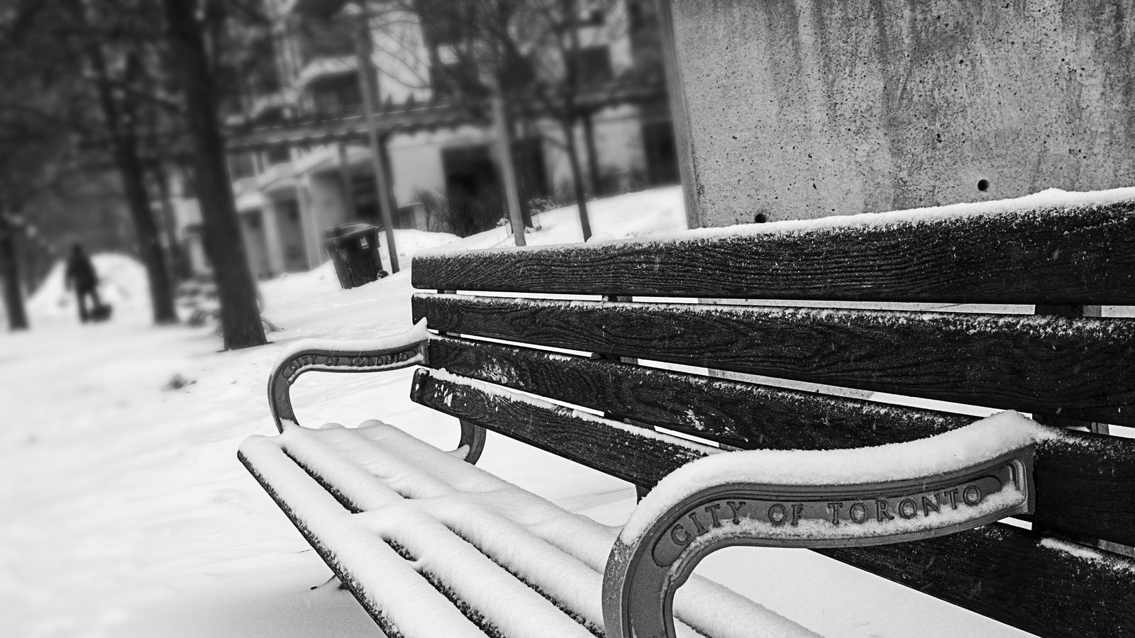 monochrome photography of bench covered with snow 894425